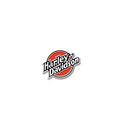 Harley-Davidson multi color kitűző